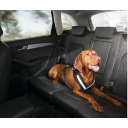Harnais de sécurité pour chien Taille S (pour petits chiens)